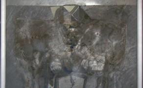Esibendo un riquadro di luce – 2009